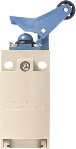 Interrupteur de fin de course Panasonic AZD1059J 220 V/DC, 380 V/AC 6 A levier à galet à rappel IP67 1 pc(s)