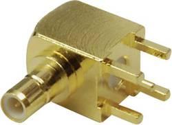 Connecteur SMB embase mâle verticale pour circuits imprimés BKL Electronic 0411030 50 Ω 1 pc(s)