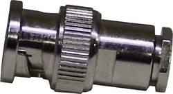 Connecteur BNC mâle, droit à souder 731171 50 Ω 1 pc(s)