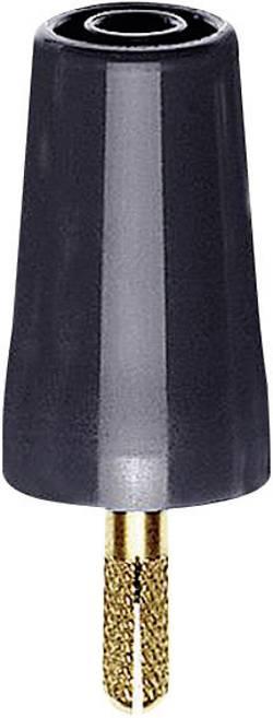 Adaptateur avec fiche doré 32 A noir Stäubli 24.0160-21