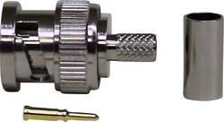 Connecteur BNC mâle droit 50 Ω 1 pcs.