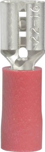 Cosse clip 4.8 mm x 0.5 mm Vogt Verbindungstechnik 3901 0.50 mm² 1 mm² partiellement isolé rouge 1 pc(s)