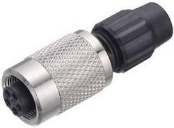Connecteur circulaire femelle, droit Binder 99-0076-100-03 Série: 711 1 pc(s)