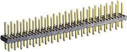 BKL Electronic Barrette mâle (standard) Nbr de rangées: 2 Nombre de pôles par