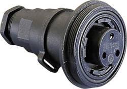 Connecteur circulaire femelle, droit Bulgin PX0737/S Série: PX 1 pc(s)