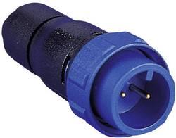 Connecteur circulaire mâle, droit Bulgin PX0410/02P/5560 Série: PX04 1 pc(s)
