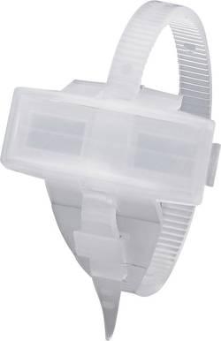 Porte-étiquette avec collier de serrage Phoenix Contact KMK 1005208 Surface de marquage: 29 x 8 mm transparent 1 pc(s)