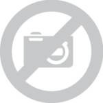 Etiquettes pour classeur Avery-Zweckform Etiquettes A4 38 x 192 mm papier blanc 210 pc(s) permanente