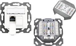 Prise réseau encastrable insert avec plaque centrale CAT 6A 2 ports EFB Elektronik ET-25133AV4 blanc pur