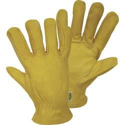 Svestrane rukavice CONDUCTORVEL. L 1610 FerdyF.