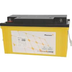 Solarni akumulator 12 V 120 Ah Phaesun Sun-Store 120 SB12-120I svinčeno-koprenasti (AGM) (Š x V x G) 410 x 225 x 177 mm M8 vijač