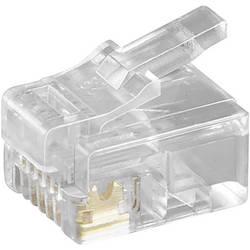 Ravni muški konektor Prozirna Basetech BT-1900624 5 ST