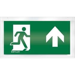 ESYLUX EN10032547 Piktogram Put spašavanja