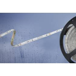 Barthelme Basic 51540428 51540428 LED trakovi s prostim koncem kabla 12 V/DC 500 cm topla bela