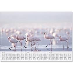 Sigel Flamingo HO472 podloga za pisanje (Š x V) 595 mm x 410 mm