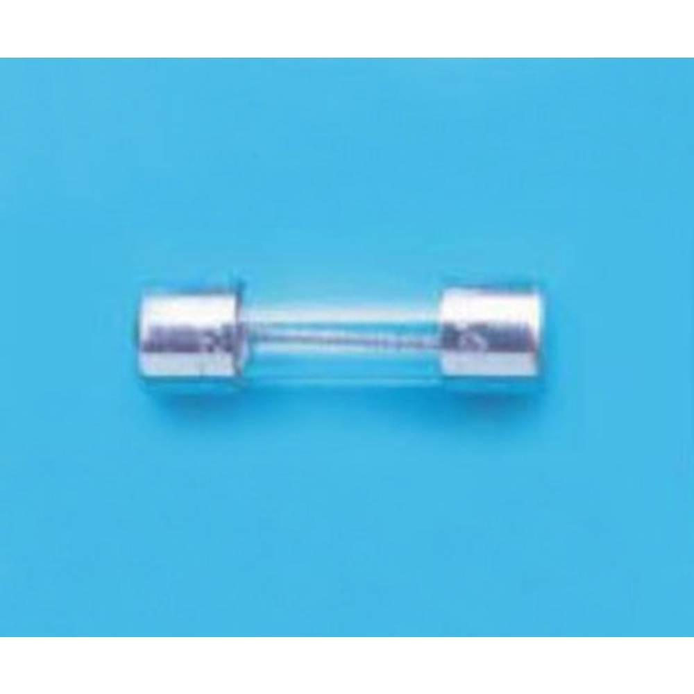 Finožični osigurač (Ø x D) 5 mm x 20 mm Spor -S- Belfuse BEL FUSE Sicherung 5TT Serie 10 A Sadržaj 100 ST