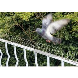 Gardigo spiral odganjalnik ptičev zastraševanje 1 KOS