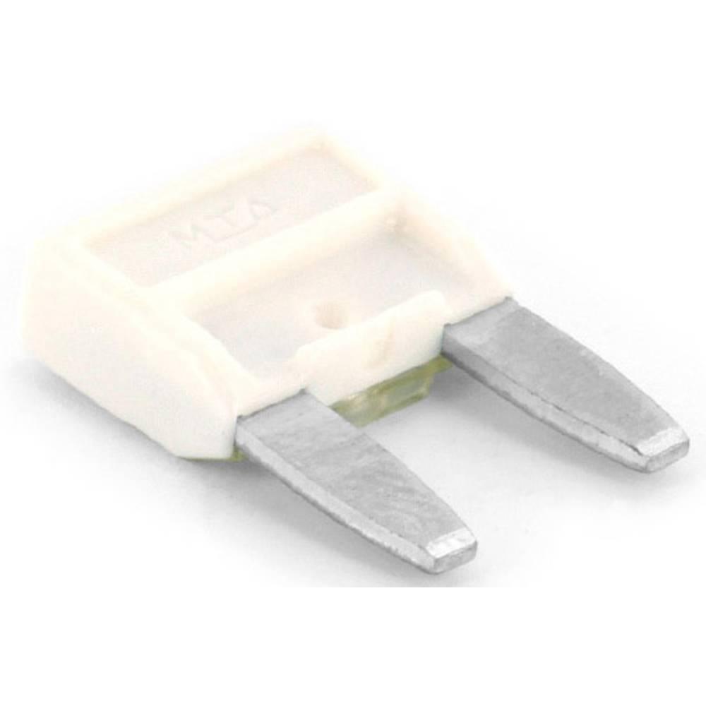 TRU COMPONENTS 8551216 mini ploščata varovalka za avtomobil 25 A bela 1 kos