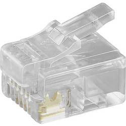 RJ12 zahodni vtič za raven kabel, 6-polni transparentna Goobay 50251 1 kos