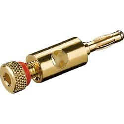 spojni vtič ravni moški konektor zlata, rdeča Goobay 11684 1 kos Bulk