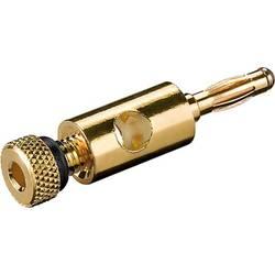 spojni vtič ravni moški konektor zlata, črna Goobay 11683 1 kos Bulk