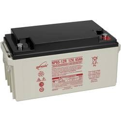 EnerSys Hawker Genesis NP65-12 svinčeni akumulator 12 V 65 Ah svinčevo-koprenast (Š x V x G) 350 x 174 x 166 mm m6-vijačni prikl
