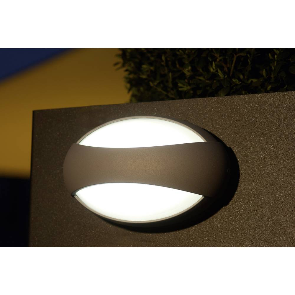 LED-Zunanja stenska svetilka 3 W nevtralno bela ECO-Light LED-Design svetilka Eyes 1861 GR antracitna