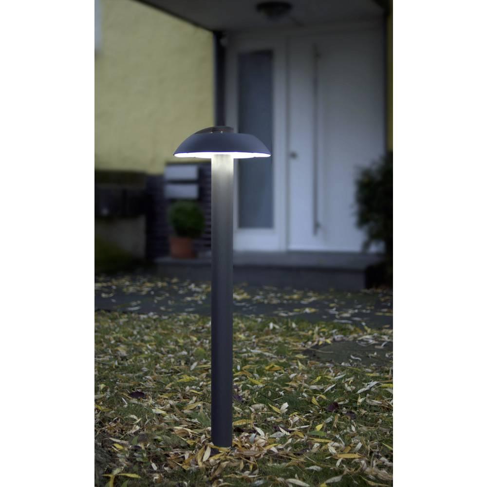 LED-Zunanja stoječa svetilka 3 W hladno-bela ECO-Light 2252 M-950 GR Spril antracitna