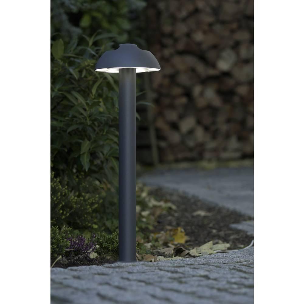 LED-Zunanja stoječa svetilka 3 W hladno-bela ECO-Light 2252 S-650 GR Spril antracitna