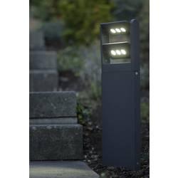 LED-Zunanja stoječa svetilka 3 W hladno-bela ECO-Light 6146 S-2-616 GR LEDSpot antracitna