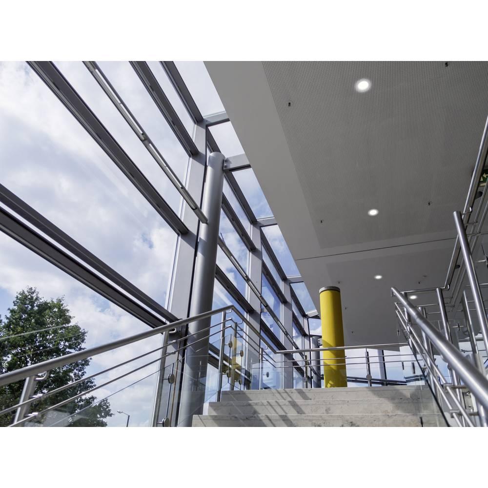 Obročasta vgradna stropna svetilka Renkforce, halogenska žarnica, GU5.3, 35 W, bele barve MC-9130