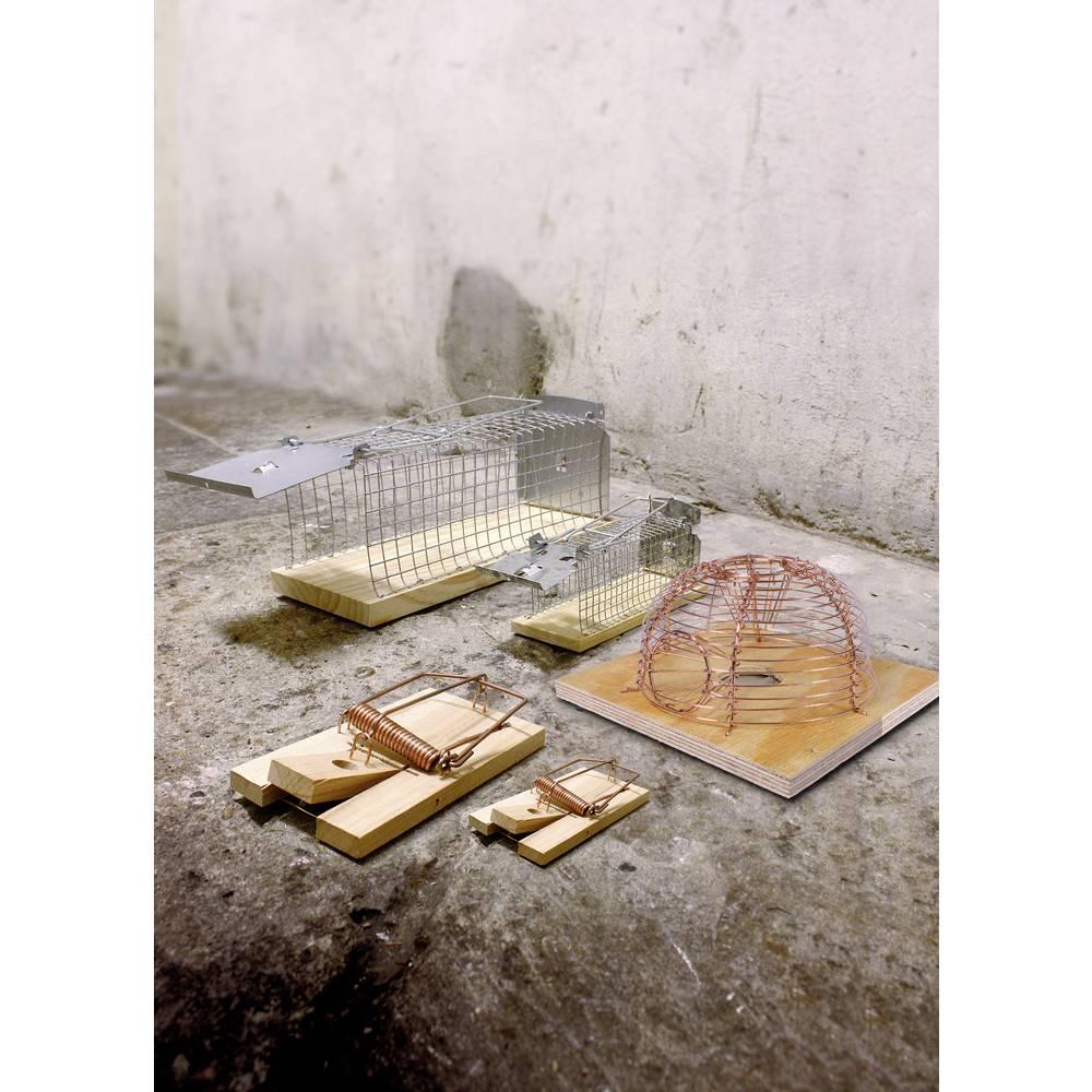 Obramba pred škodljivci Swissinno lesena mišolovka SuperCat Classic, 2-delni komplet 1 718 306