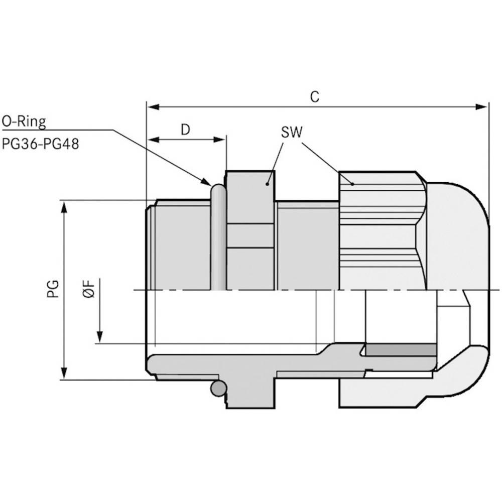 Kabelforskruning LappKabel SKINTOP® ST PG 42 PG42 Polyamid Sølvgrå (RAL 7001) 5 stk