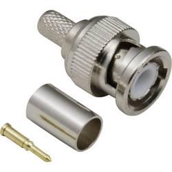 BNC-konektor, raven vtič 50 BKL Electronic 0401255/D 1 kos