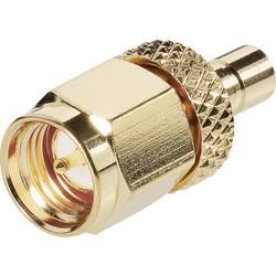SMB-adapter SMB-vtičnica - SMA-vtič BKL Electronic 0409099 1 kos