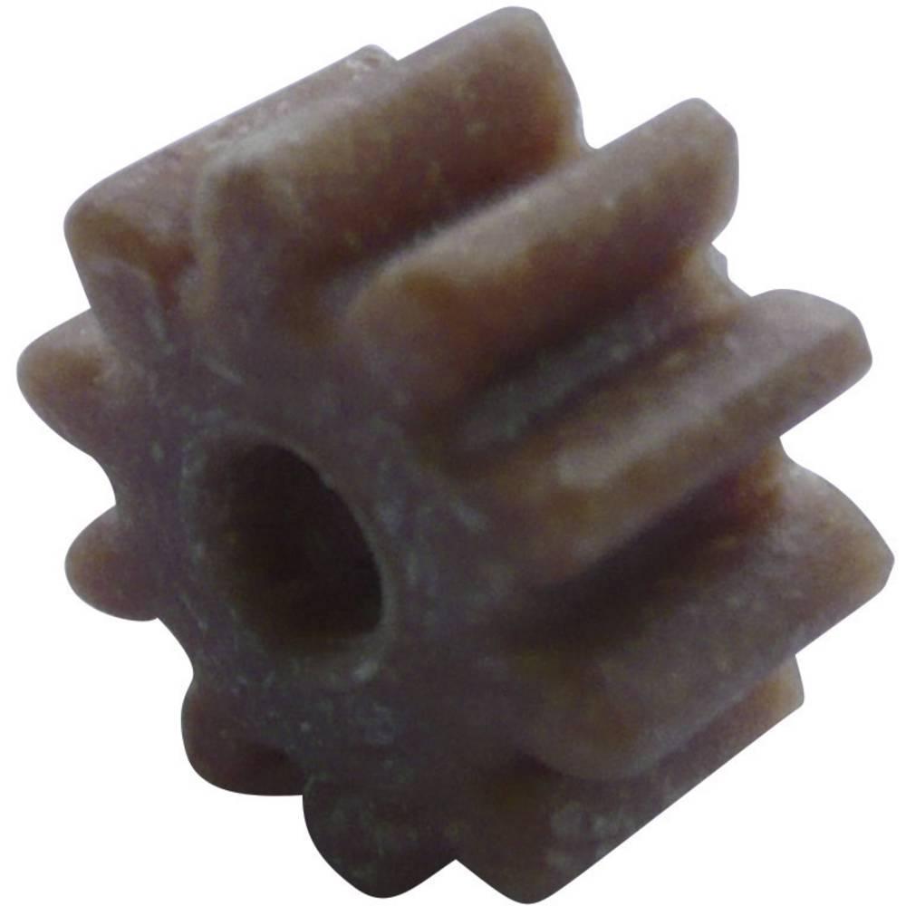 Les, Plastika Zobnik Reely Vrsta modula: 1.0 Število zob: 10 1 KOS