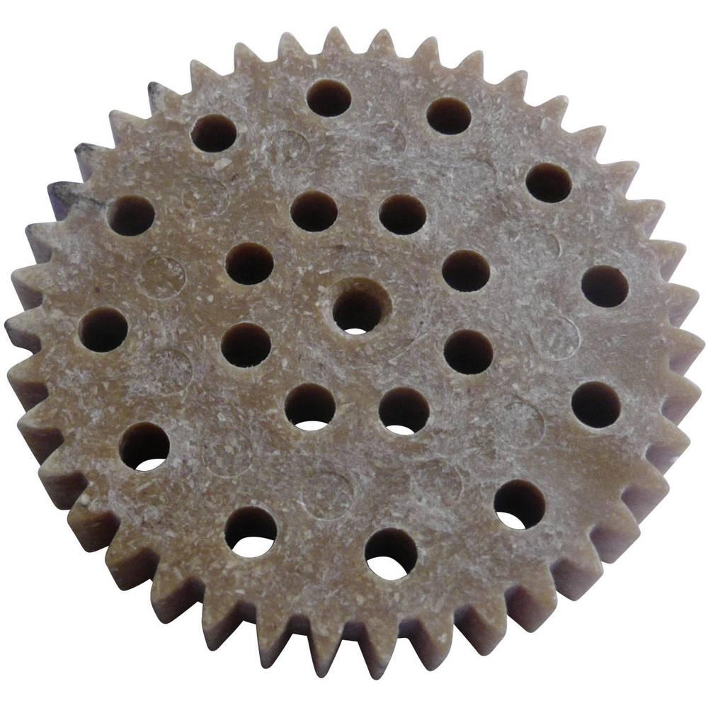 Les, Plastika Zobnik Reely Vrsta modula: 1.0 Število zob: 40 1 KOS