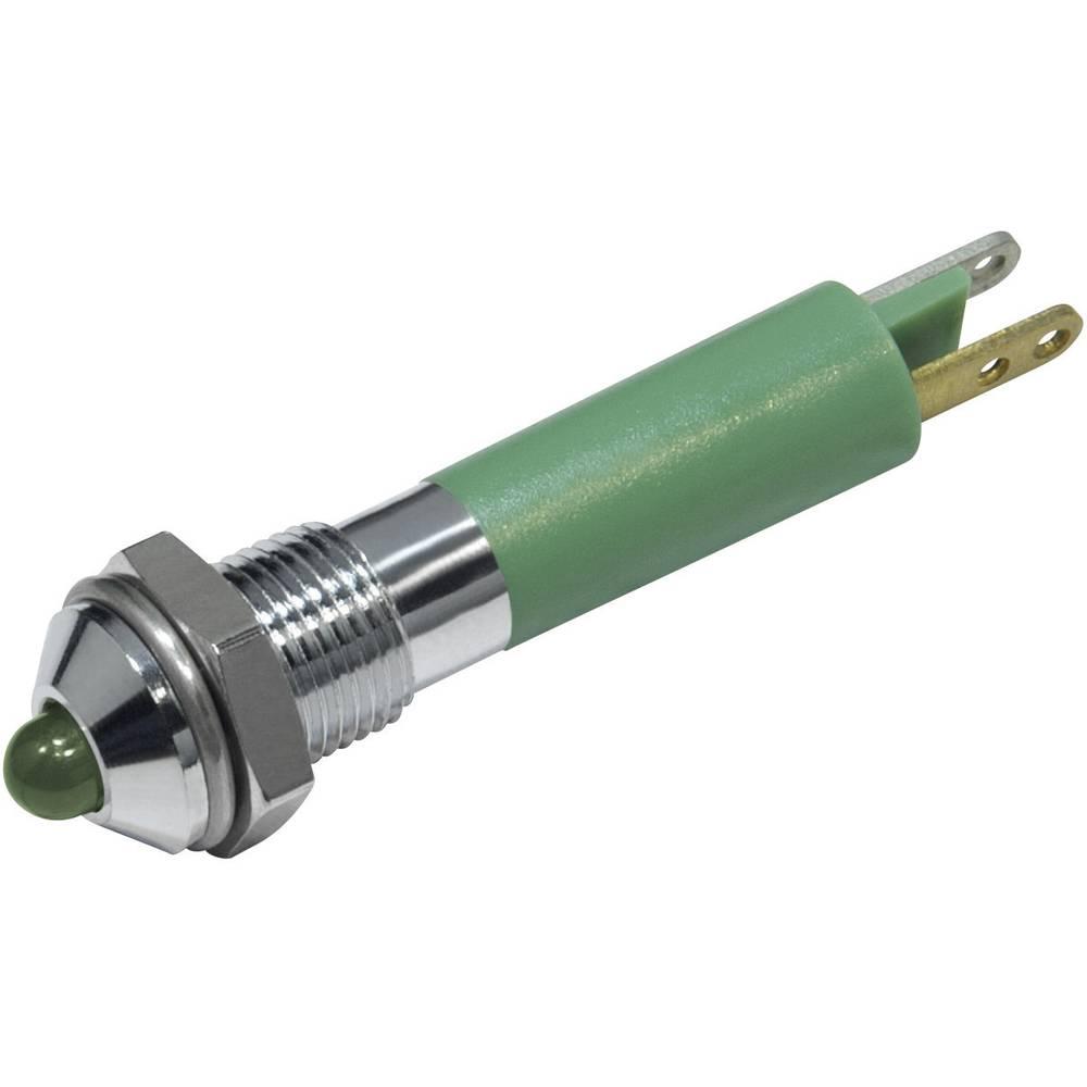 LED signalna lučka, zelena 24 V/DC CML 19020351