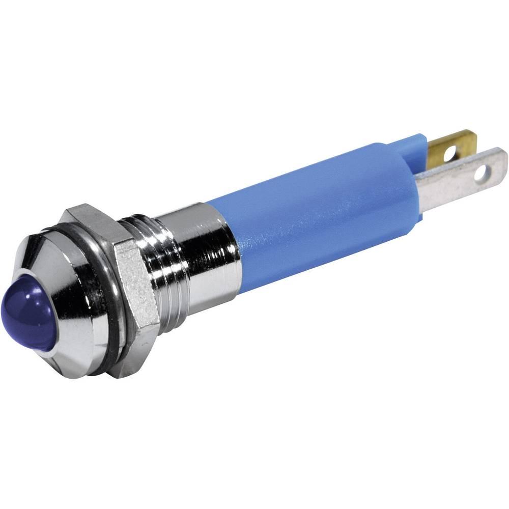 LED signalna lučka, modra 12 V/DC CML 19040257