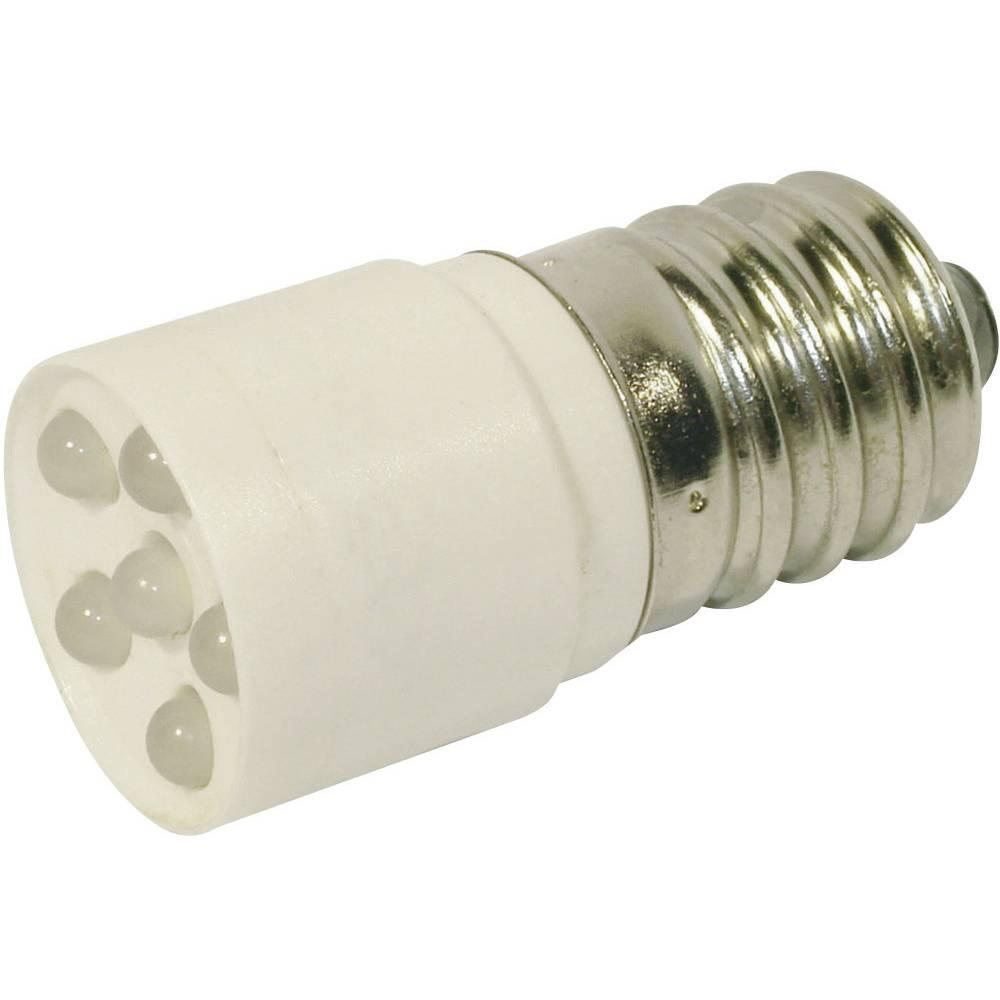 LED žarnica E14 hladno bela 24 V/DC, 24 V/AC 1200 mcd CML 1864635W3D