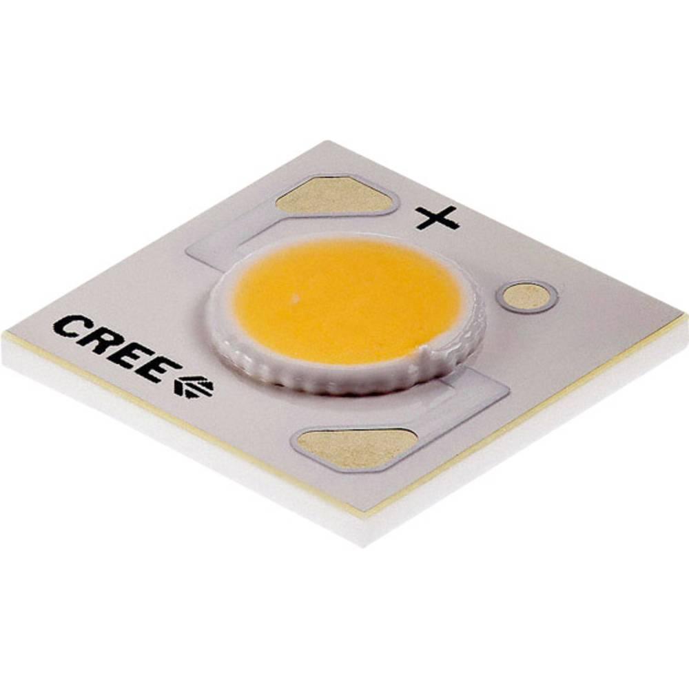 HighPower LED nevtralno bela 10.9 W 425 lm 115 ° 18 V 500 mA CREE CXA1304-0000-000F0HB440F