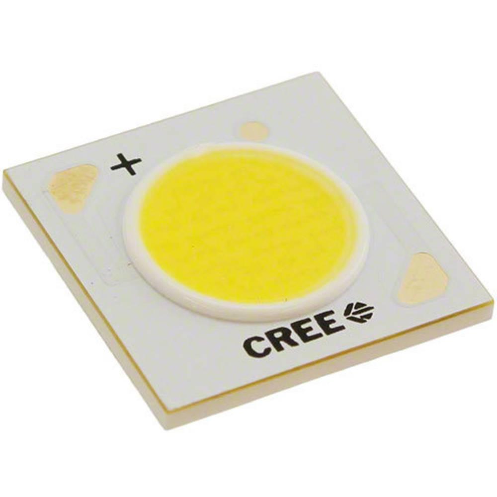 HighPower LED topla bela 14.8 W 755 lm 115 ° 18 V 750 mA CREE CXA1507-0000-000F00F435F