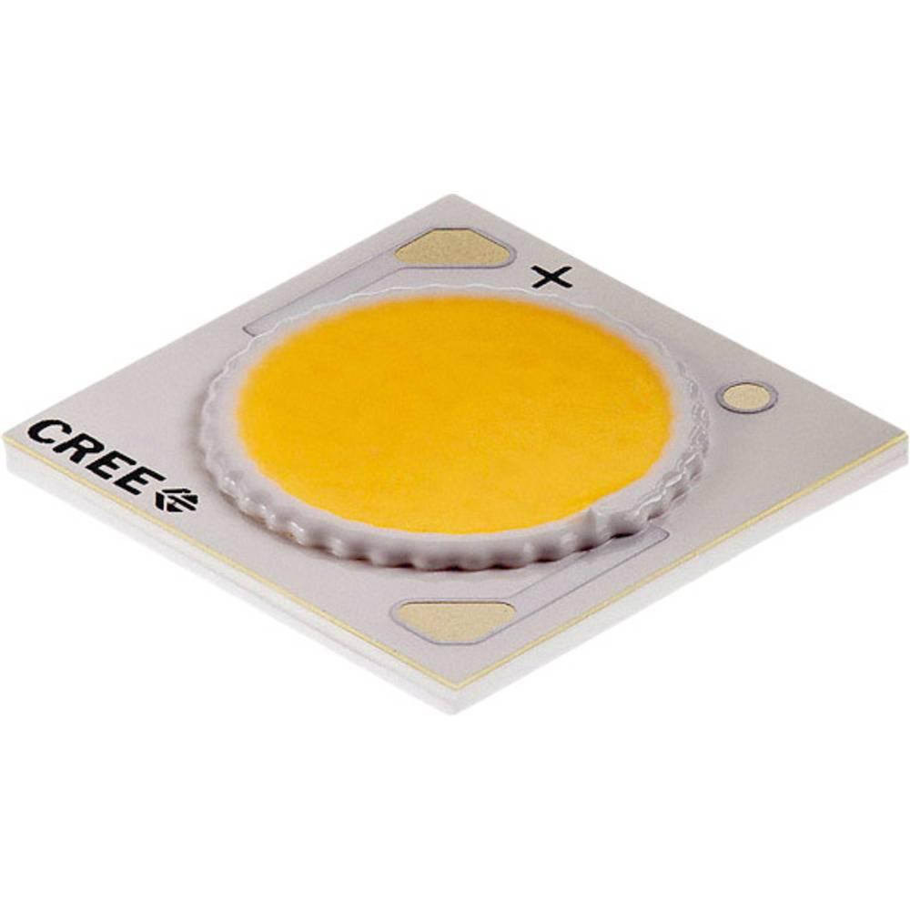 HighPower LED nevtralno bela 38 W 1898 lm 115 ° 37 V 900 mA CREE CXA1816-0000-000N00P240F