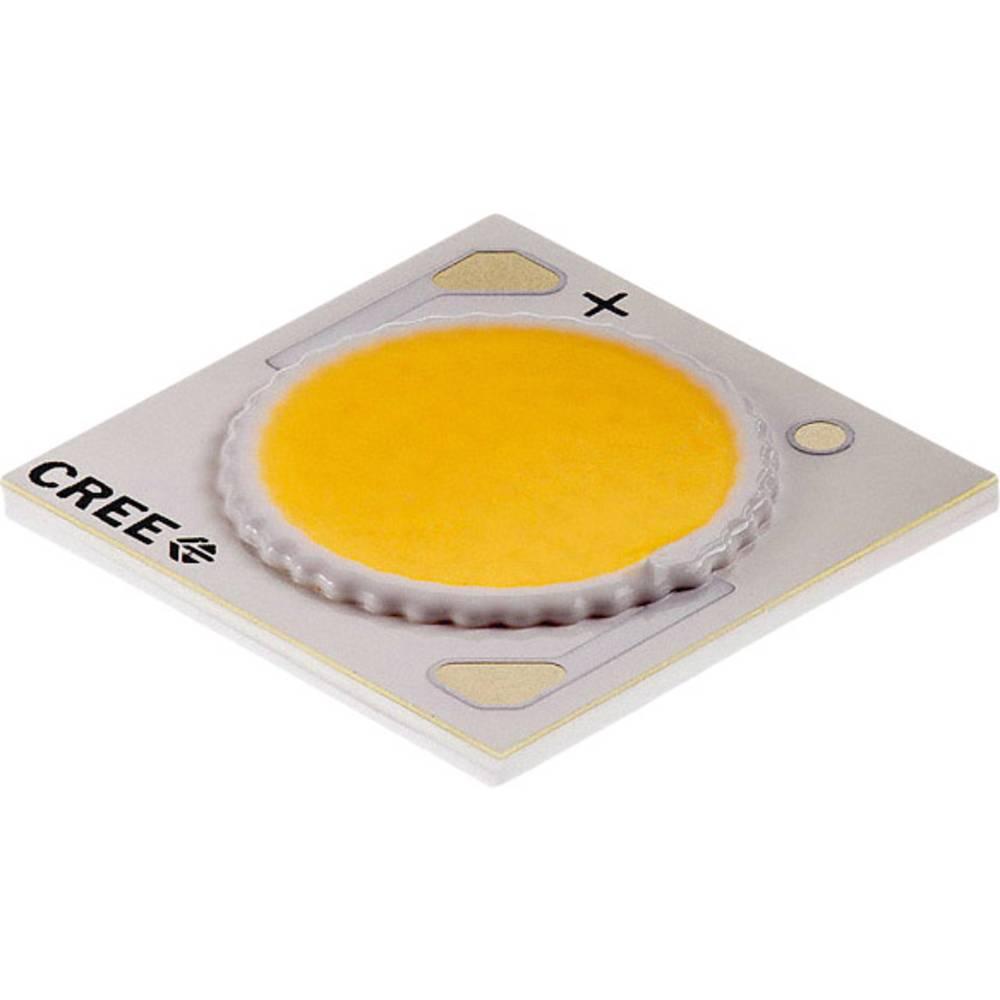 HighPower LED nevtralno bela 38 W 2033 lm 115 ° 37 V 900 mA CREE CXA1816-0000-000N00P40E5