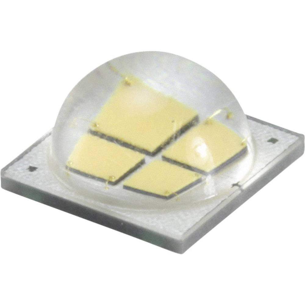 HighPower LED nevtralno bela 15 W 935 lm 120 ° 12 V 1250 mA CREE MKRAWT-02-0000-0D0HH240H