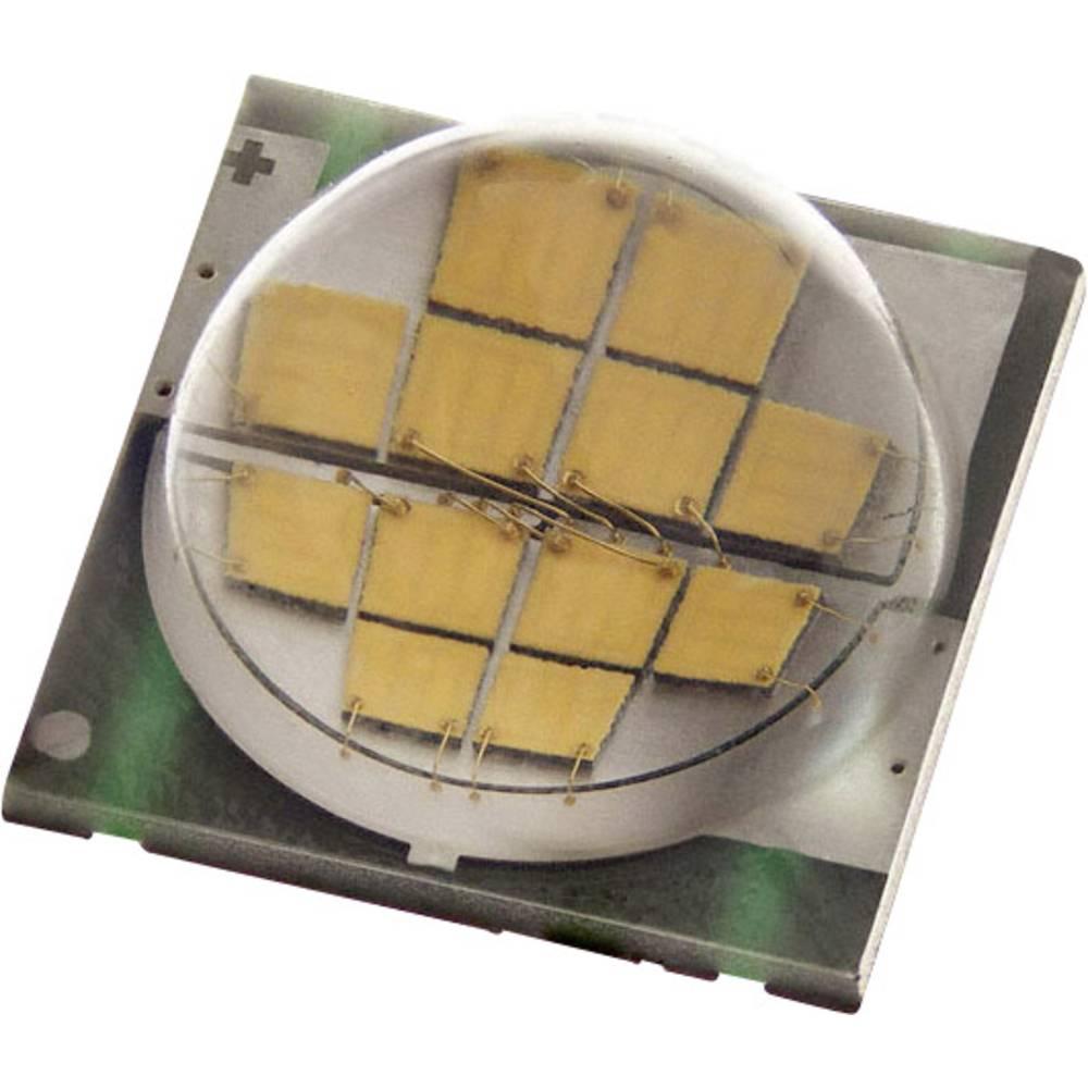 HighPower-LED CREE Neutral hvid 25 W 700 mA