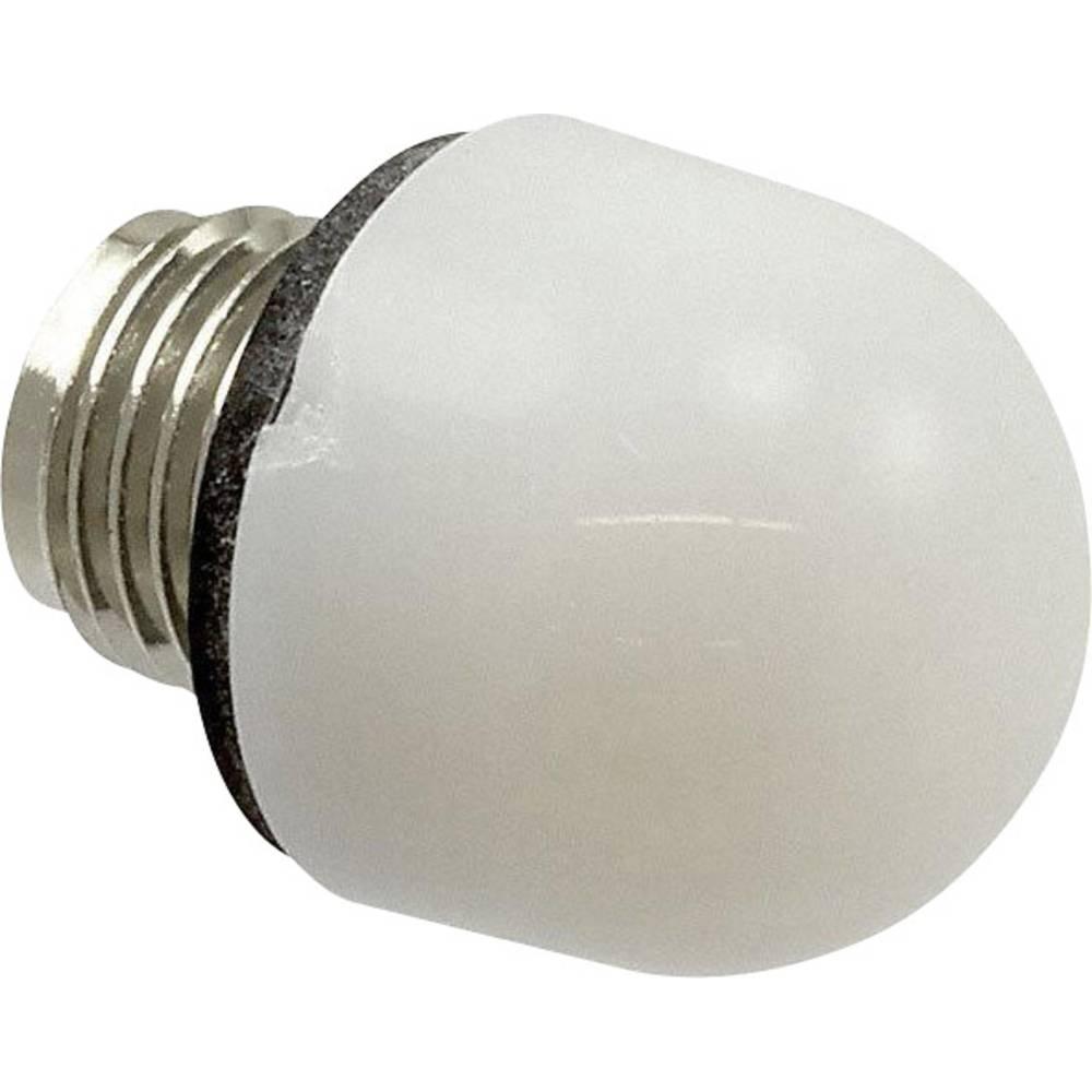 LED poklopac, bijeli Dialight 101-0975-003