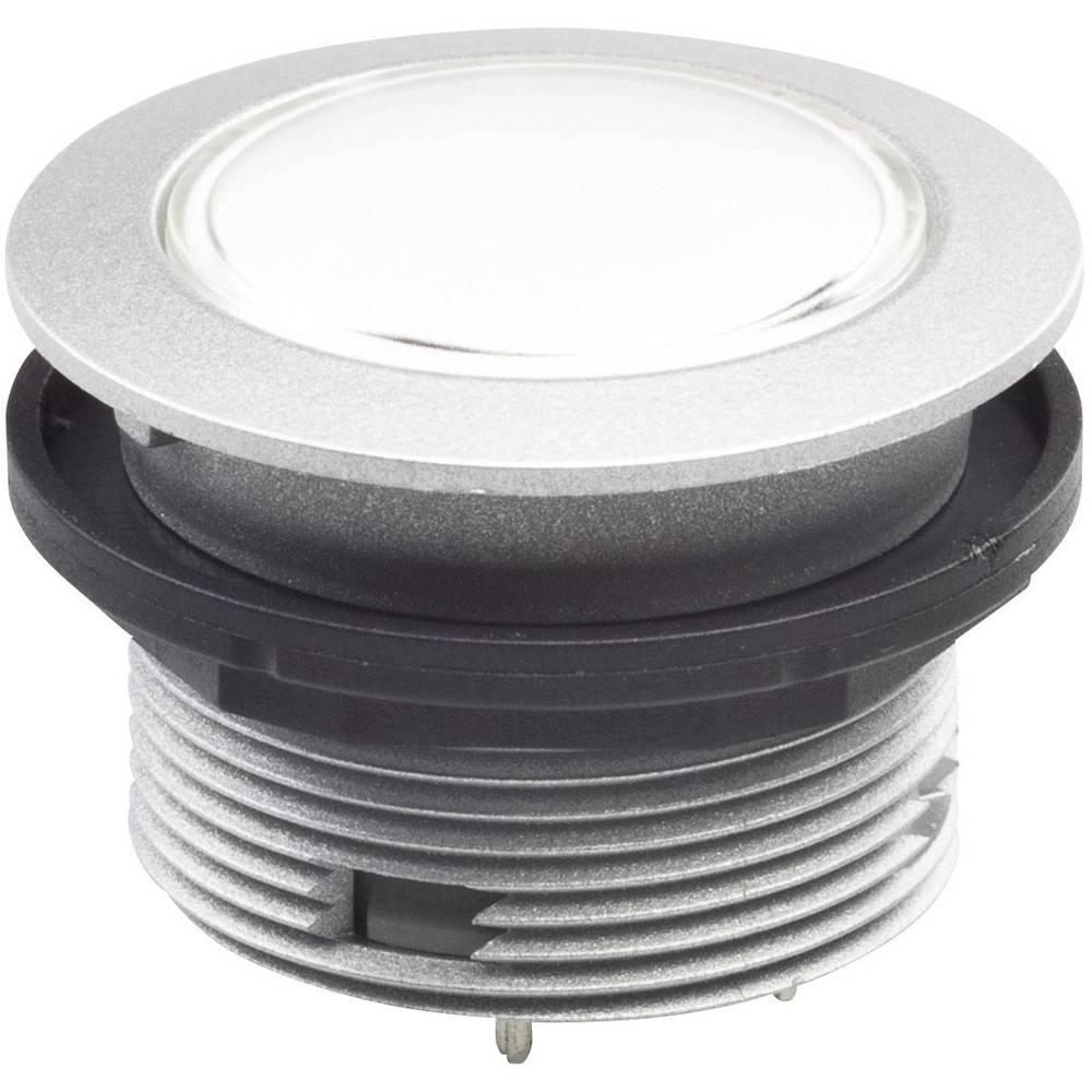 Pritisni gumb 42 V DC/AC Schlegel STOOP IP65/67 tipkalni 10 kosov