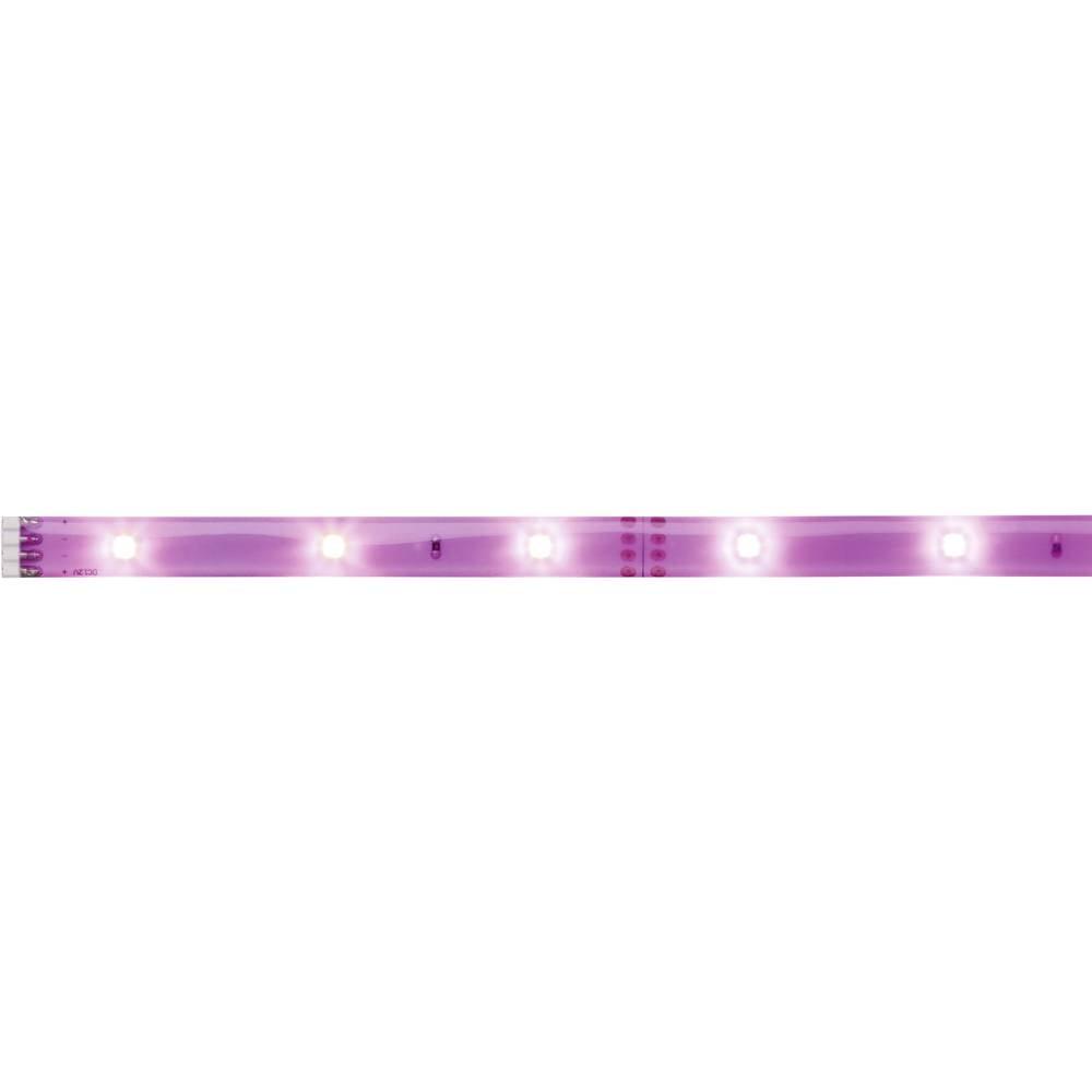LED traka YourLED Deco 70436 Paulmann produžetak 12 V/DC 100 cm neonski ljubičasta