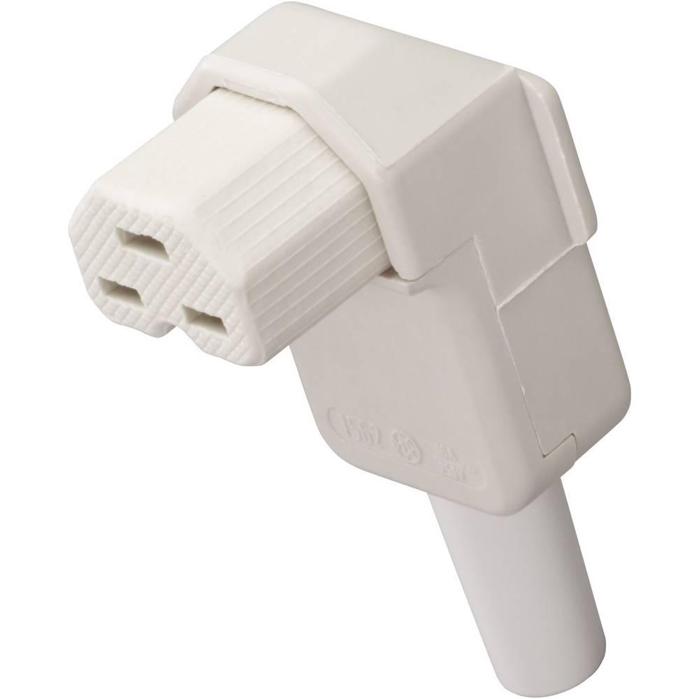 Utični konektor za tople uređaje C21 Kalthoff, ženski, pod kutem broj polova: 2 + PE 16 A bijela 1562 ... 1 komad